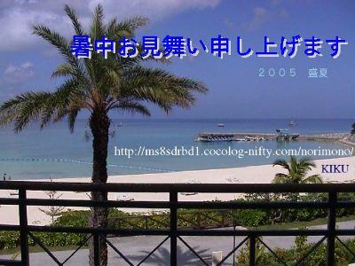 KIKU-shochu1
