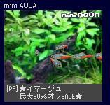 miniaqua2